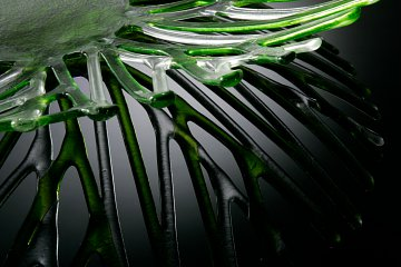 Contemporary Glass Photography 18